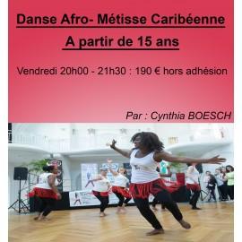 Danse Afro Métisse Caribéenne